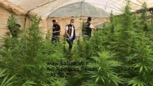 Uyuşturucu davalarına bakan avukatlar – İzmir